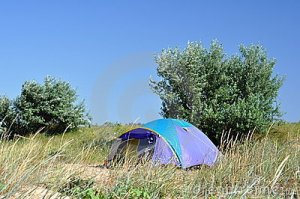 camping-tent-grass-15269945