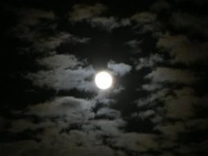 moon-at-night-landscape_w725_h544