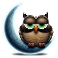 inkspill night owl