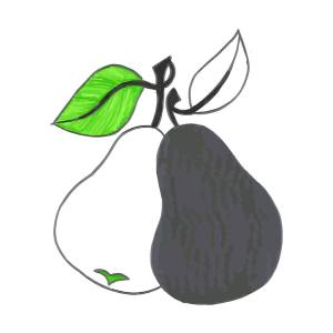 black pear