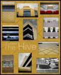 hive1
