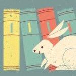 nano rabbit