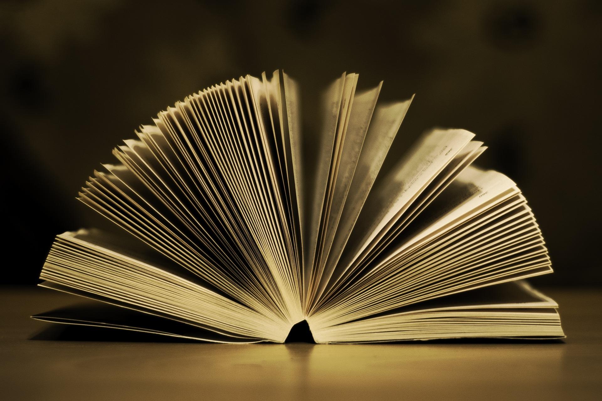book-933088_1920