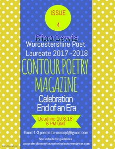 contour final call celebration issue 4 poster