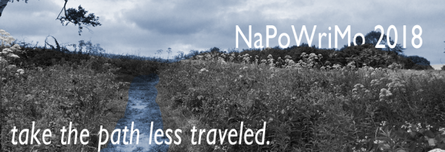 napofeature3
